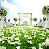 式場選びを始める時期って結婚式予定日のどれくらい前から?
