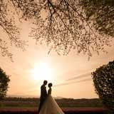 【フォトウェディング拝見】 vol.3 家族も一緒の『Weddingフォト』