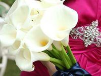 【衣装編】テーマカラーのピンク×ゴールド×ネイビーを取り入れた上品&シンプルなコーディネート*