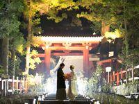 世界遺産での和婚を見に行ってみよう!「ライトアップNIKKO2018×日光世界遺産Night Wedding」の魅力とは♪