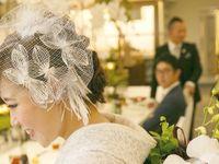 個性派な花嫁さんに人気!クラシカルでお洒落な《バードケージベール》のブライダルヘア特集♪