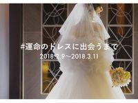 【Brides UP!】ドレス写真の投稿イベント「#運命のドレスに出会うまで」がスタート♪