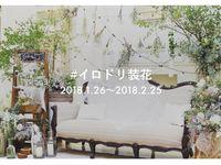 【Brides UP!】装花写真の投稿イベント「#イロドリ装花」がスタート♪