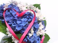 ジューンブライド花嫁さん必見!季節感あふれる紫陽花を使ったブーケ10選♪