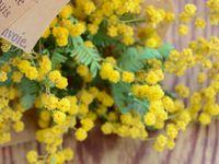\ナチュラル派花嫁さん必見♪/花と緑のアトリエ「malta(マルタ)」に注目