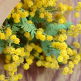 \ナチュラル派花嫁さん必見/花と緑のアトリエ「malta(マルタ)」に注目