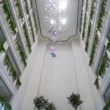 4Fロビー天井