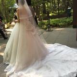 後ろ姿が綺麗に見えるドレスです。