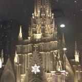 室内から撮影した夜の大聖堂