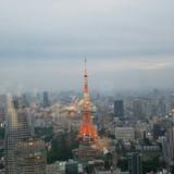 東京タワーも綺麗によく見えます。