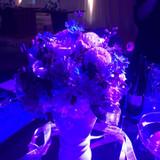 ライトにあたったお花