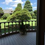 中庭に出て写真が撮れます。