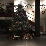 玄関には大きなクリスマスツリー