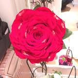 カラードレスの際持った大きな薔薇花びら