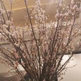 春をイメージしたテーブルのお花。