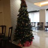 クリスマスシーズンのツリー