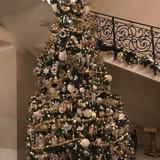 クリスマスの時期にはツリーがあります。
