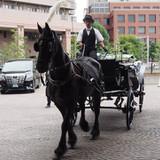 挙式の後に馬に乗ります。