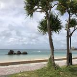 撮影場所のアラハビーチ