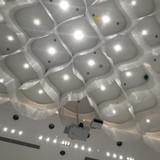 天井部分。すごく魅力的です。