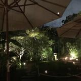 夜のガーデンルームの美しい御庭写真です。