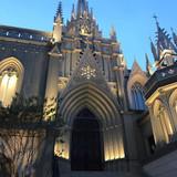 ライトアップされた大聖堂