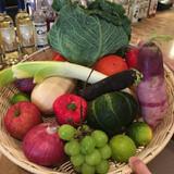 たくさんの種類のお野菜を使った素敵な料理