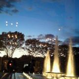 噴水公園の夜景