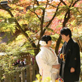 紅葉シーズンの筑波山神社は最高のロケーション!