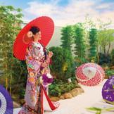 神殿前には日本庭園が広がり、古式ゆかしい雰囲気でのぞむことができる。