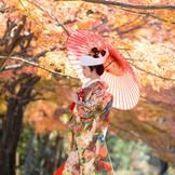 式が感じられる自然の中にたたずむ式場。桜、新緑、紅葉…四季折々の椿さんでの神前式です。