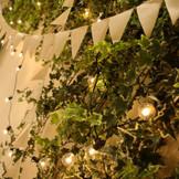 新コーディネート「フォレスタ」室内でも緑あふれる空間に