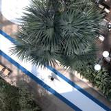 リゾート気分を満喫出来るロケーション!ホテル内の特別空間でガーデンウエディング ●挙式スタイル/【教会式/人前式】牧師または司式者・アコーディオン・トランペットなどのオリジナル演出が大人気 ●収容人数/100名 屋根付の全天候型ガーデン