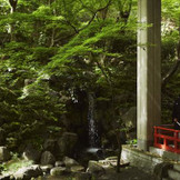 京都市文化財(名勝)登録の葵殿庭園は約90年の歴史を刻む文化的価値の高い庭園