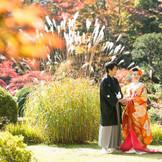 錦秋の美しさも格別でロケフォト抜群!白無垢も色打掛もウェディングドレスも映える!