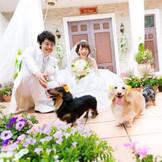 ペットも家族の一員という方必見! ワンちゃん参加型の結婚式も可能!
