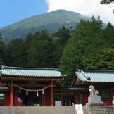 本殿、唐門、拝殿など重要文化財指定の主要建造物で心に残る結婚式を