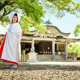 提携神社へのご紹介、もしくは空き日程のご相談も承ります。
