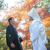 四季を感じる鎌倉