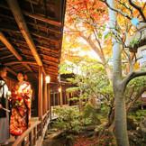 秋は紅葉が美しい舞子ホテル。 敷地内に広がる緑の庭園には、秋に色付く紅葉の木があります。 綺麗に染まった紅葉と記念のお写真を残していただくのは、結婚式でも前撮りでも人気のフォトポイント。