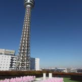 横浜の青い空、青い海、シーサイドガーデンチャペル 2015年2月リニューアルオープン決定!
