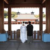 格式高い、橿原神宮の神前結婚式。