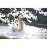 桜に包まれてロマンチックなフォト