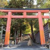 吉田神社の鳥居。鳥居の奥には階段が続いており、とても風情があります。絶好のお写真撮影のスポットです♪