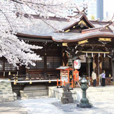 春の熊野神社