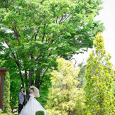 自然豊かなグランフレ ハウスではまるで森の中にいるかのようなお写真が残せちゃう