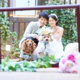 ガーデンウエデイングには大切な家族・愛犬も参加して。