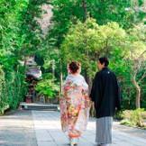 自然豊かな八幡宮で鎌倉ならではの1枚を