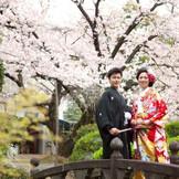 萃香園ホテルを華麗に彩る桜の樹木