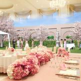 リニューアル決定!披露宴会場オードリーに併設されたプライベートガーデンに桜が登場!来年の春は桜の花のもと桜ウエディングを☆